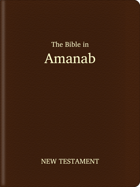 Amanab Bible - New Testament