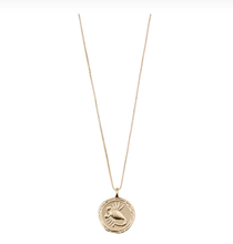 Load image into Gallery viewer, SCORPIO - Zodiac Necklace