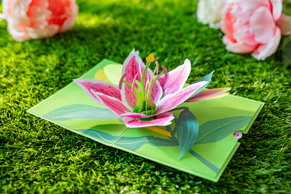 lily bloom pop up card