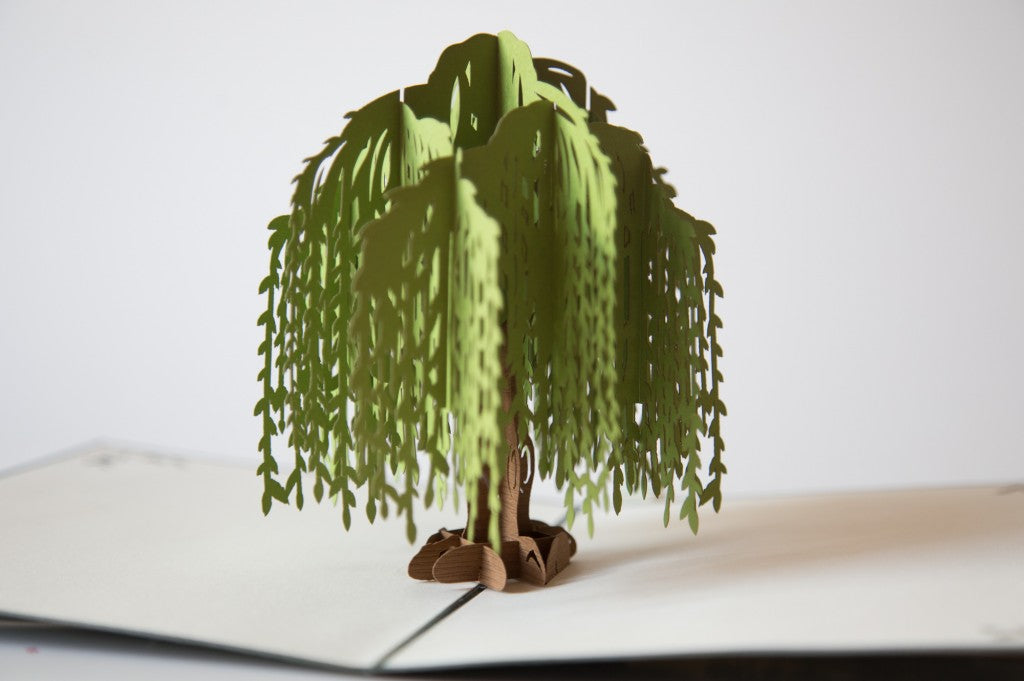 Paper pop up card, willow tree, green