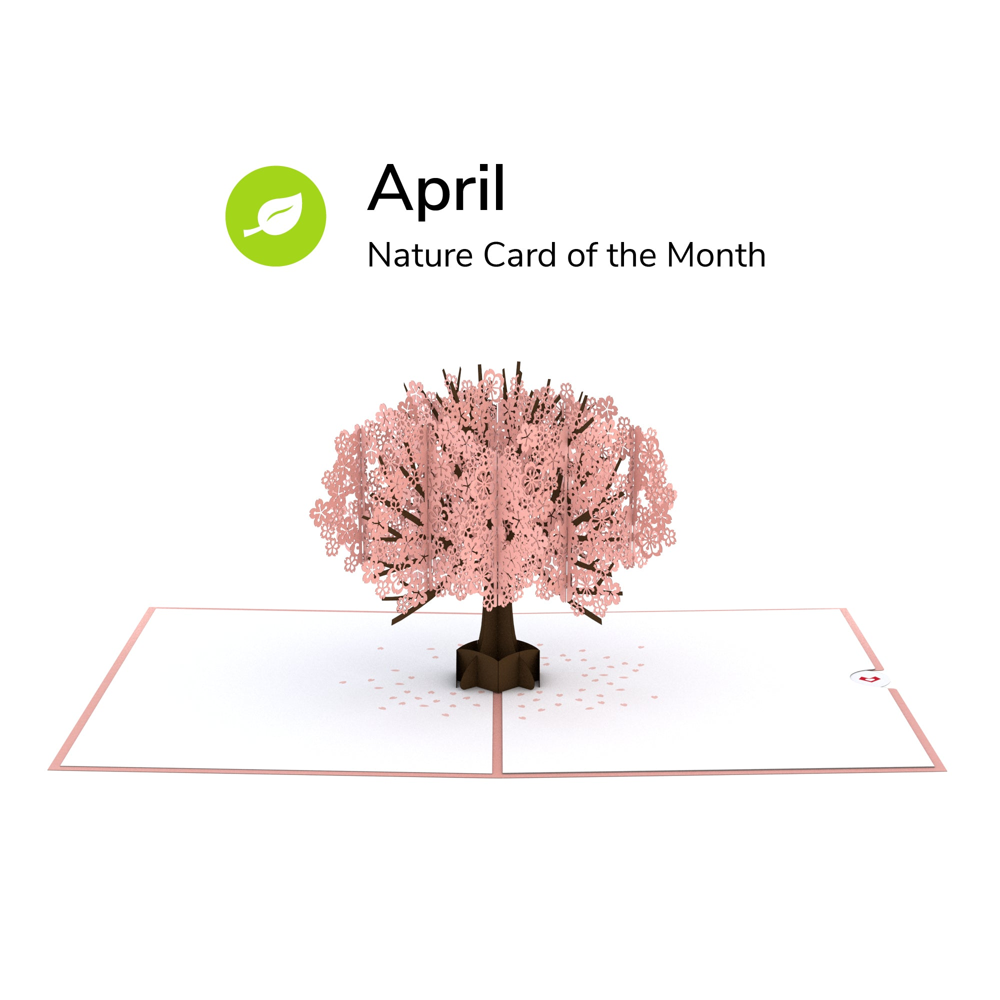 Card of the Month - Nature
