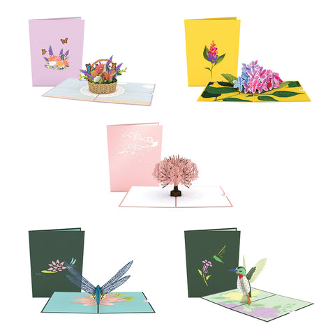 May 5 Pack greeting card -  Lovepop