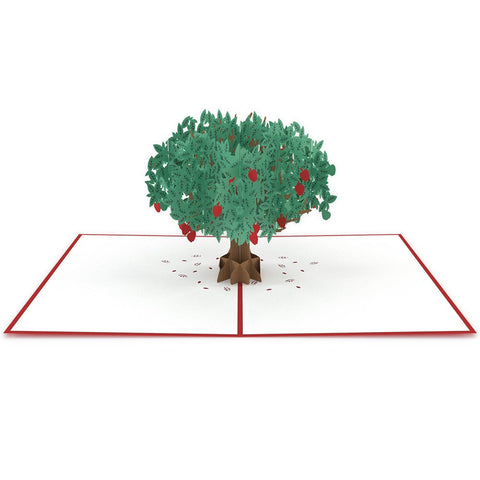 Apple Tree Pop Up Card greeting card -  Lovepop
