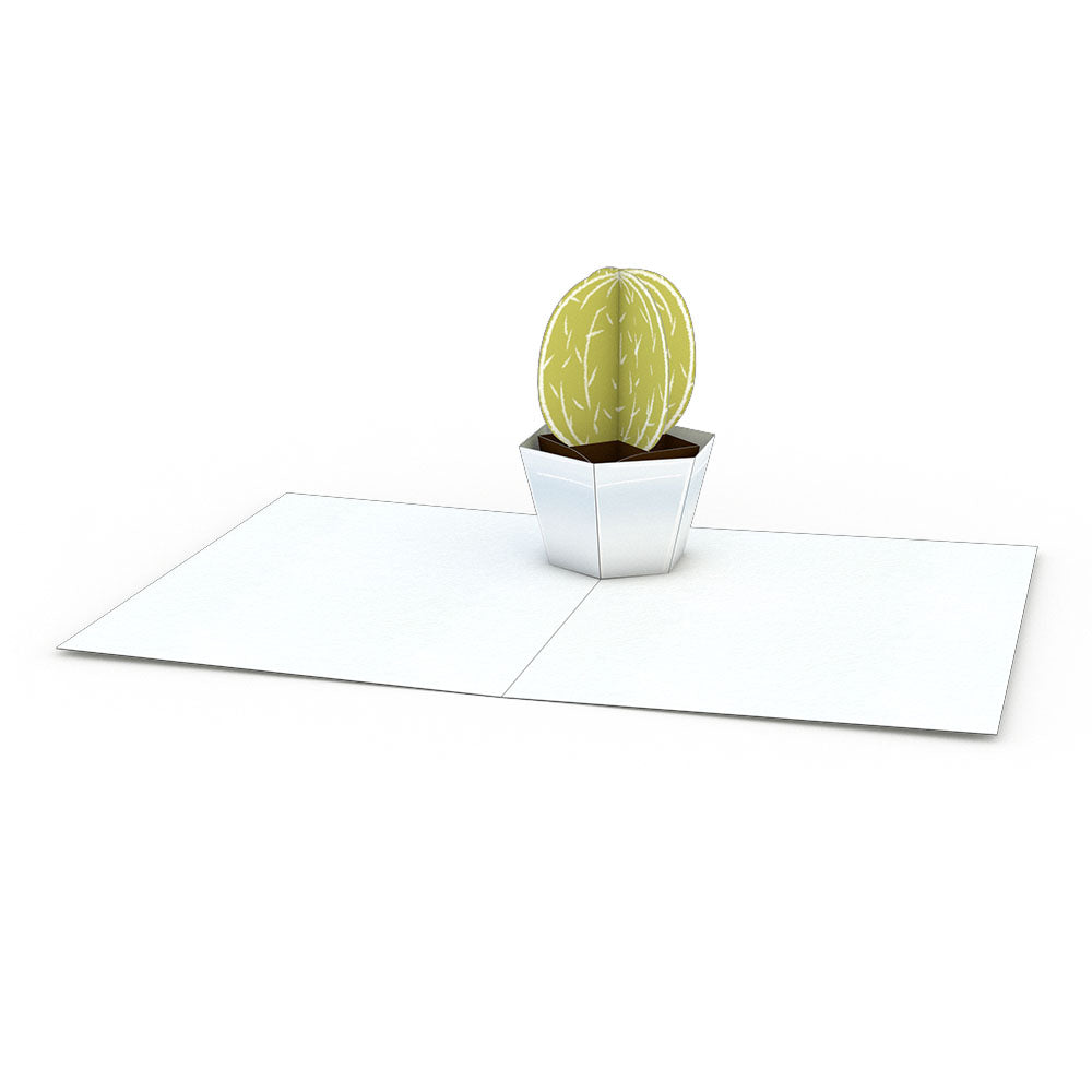 Succulent Notecards (Assorted 4-Pack)