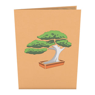 Bonsai Tree Pop up Card