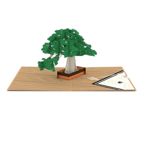 Bonsai Tree Pop up Card greeting card -  Lovepop