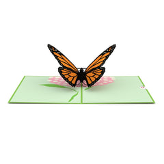 Butterfly Pop up Card greeting card -  Lovepop