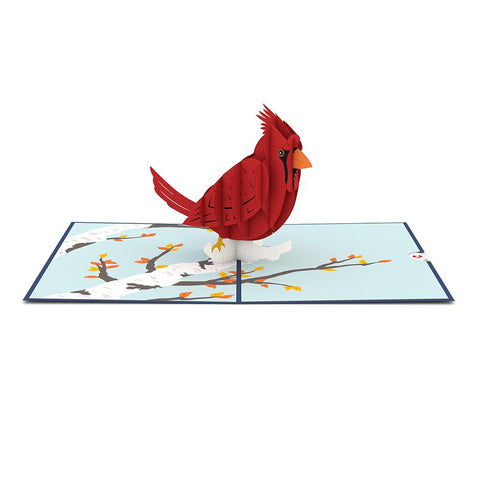Cardinal Pop up Card greeting card -  Lovepop