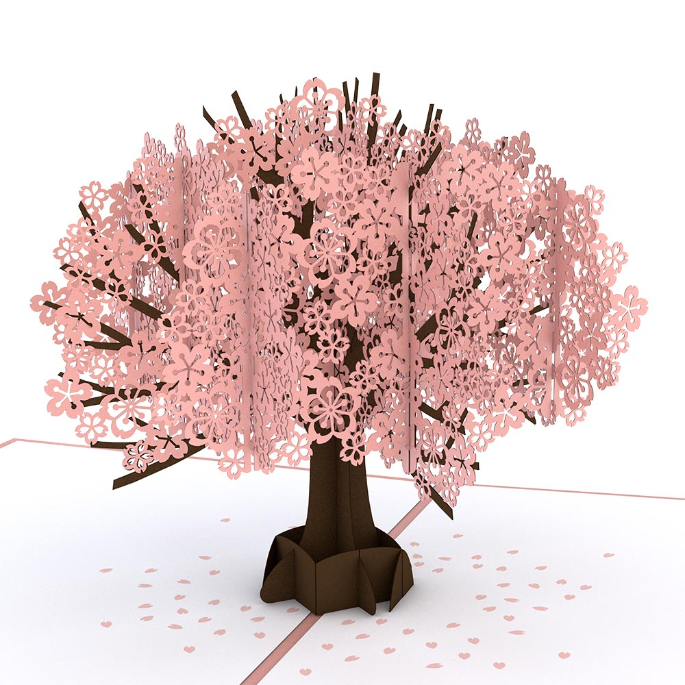 Cherry Blossom birthday pop up card