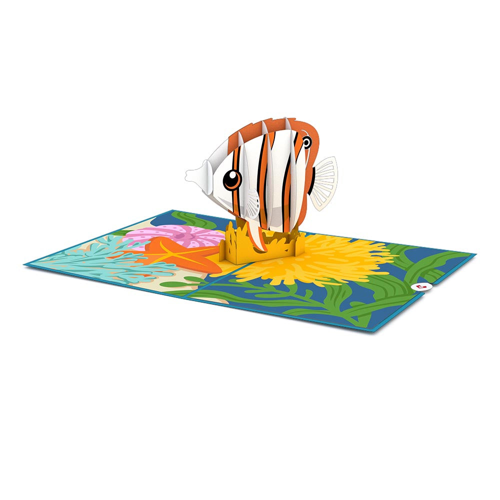 Copperband Butterflyfish Pop-Up Card