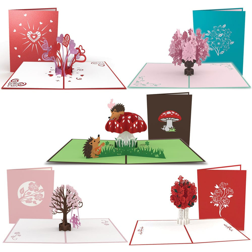 Dad's V-Day Survival 5 Pack pop up card