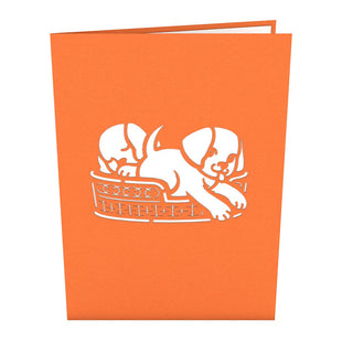 Dog Family Pop Up Puppy Card