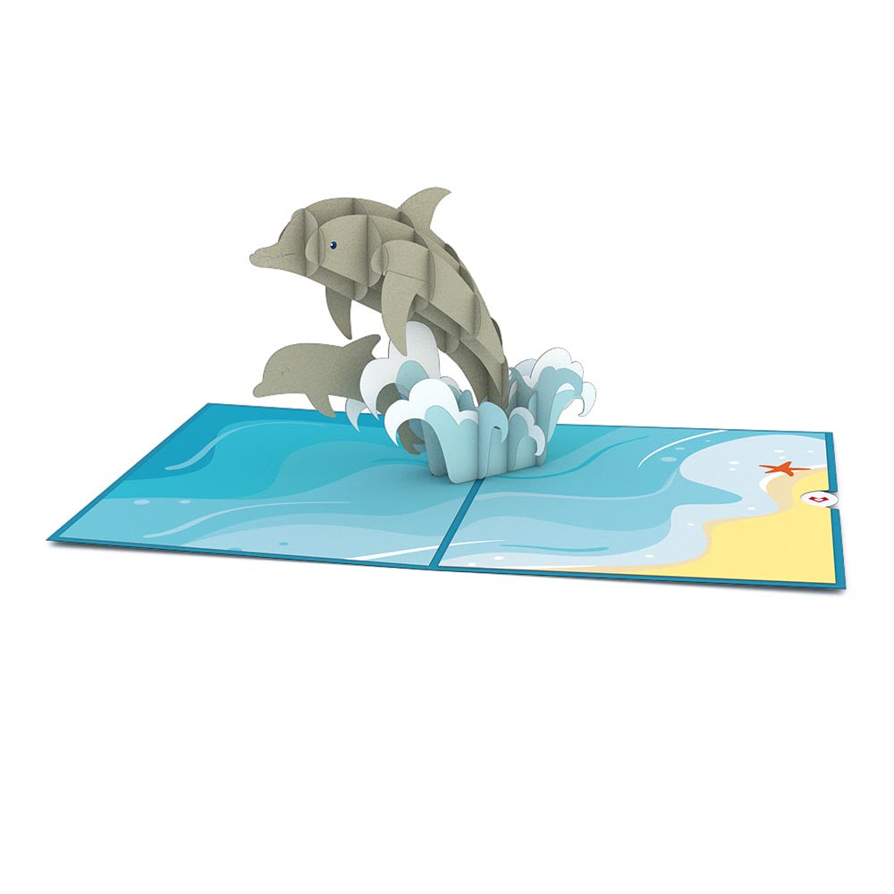 Dolphins birthday pop up card