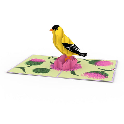 Goldfinch greeting card -  Lovepop