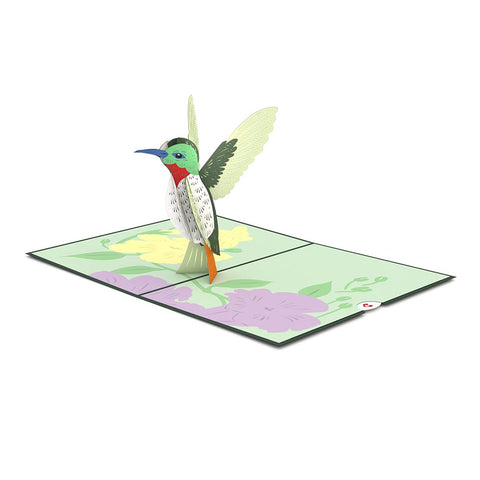 Hummingbird Pop up Card greeting card -  Lovepop