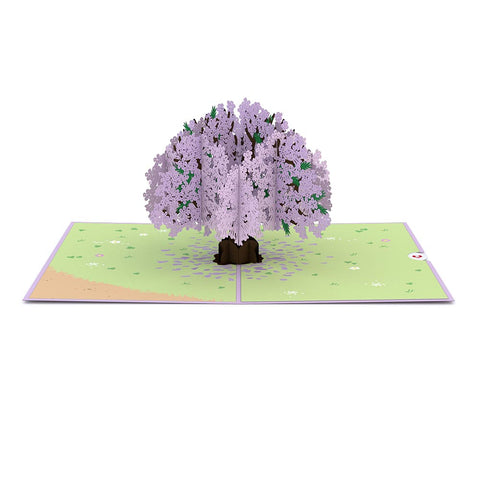 Jacaranda Tree Pop up Card greeting card -  Lovepop