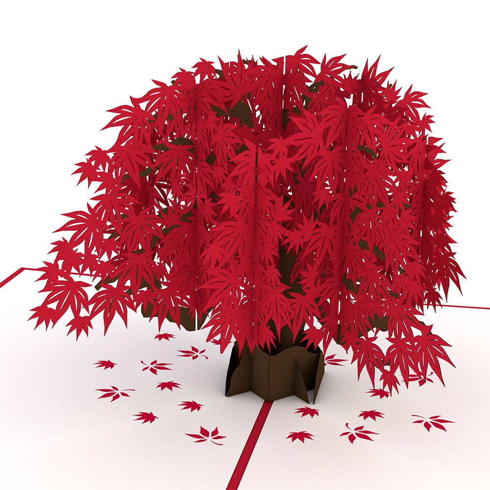 Japanese Maple pop up card