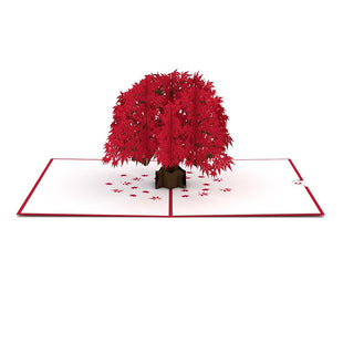 Japanese Maple Pop up Card greeting card -  Lovepop