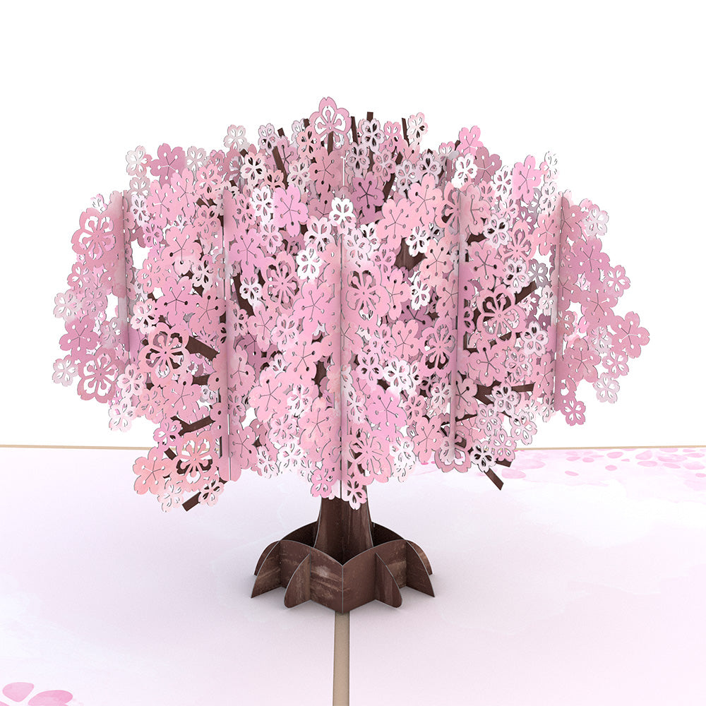 Mother's Day Cherry Blossom             pop up card