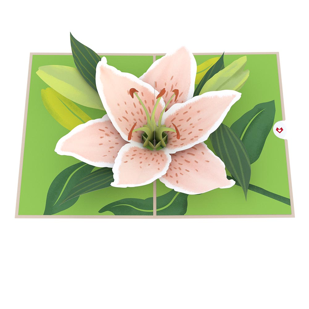 Mother's Day Lily Bloom             pop up card