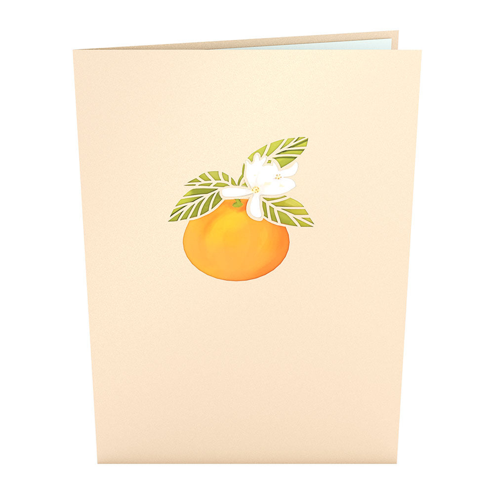 Orange Blossom Tree             pop up card