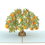 Orange Blossom Tree                                   pop up card - thumbnail