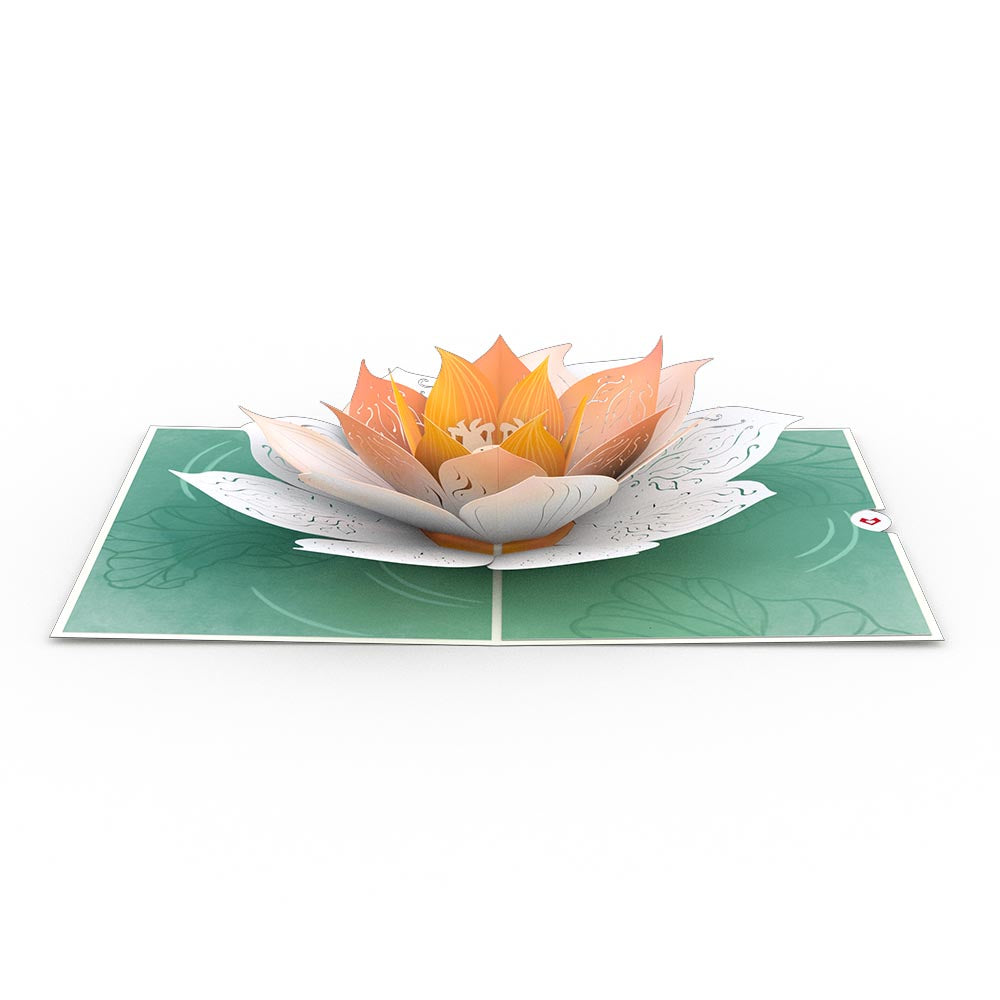 Lotus Bloom             pop up card