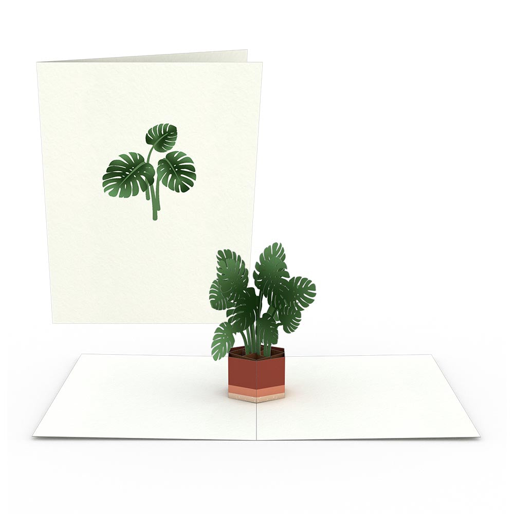 Plants Notecards (Assorted 4-Pack)