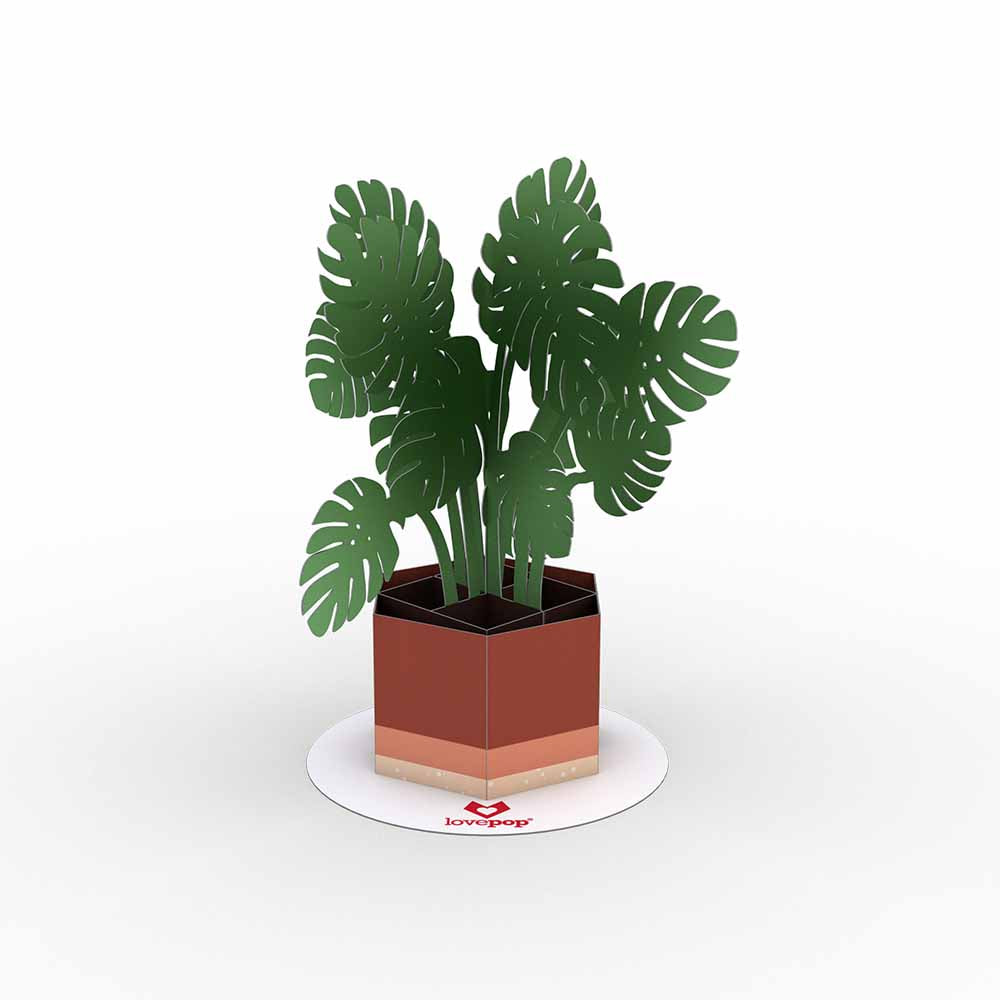Stickerpop™: Monstera (5-Pack)             pop up card