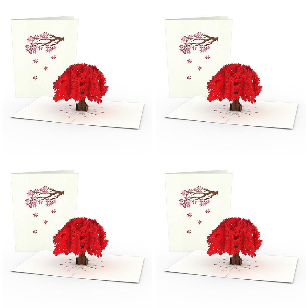 Japanese Maple Notecards (4-Pack)             pop up card