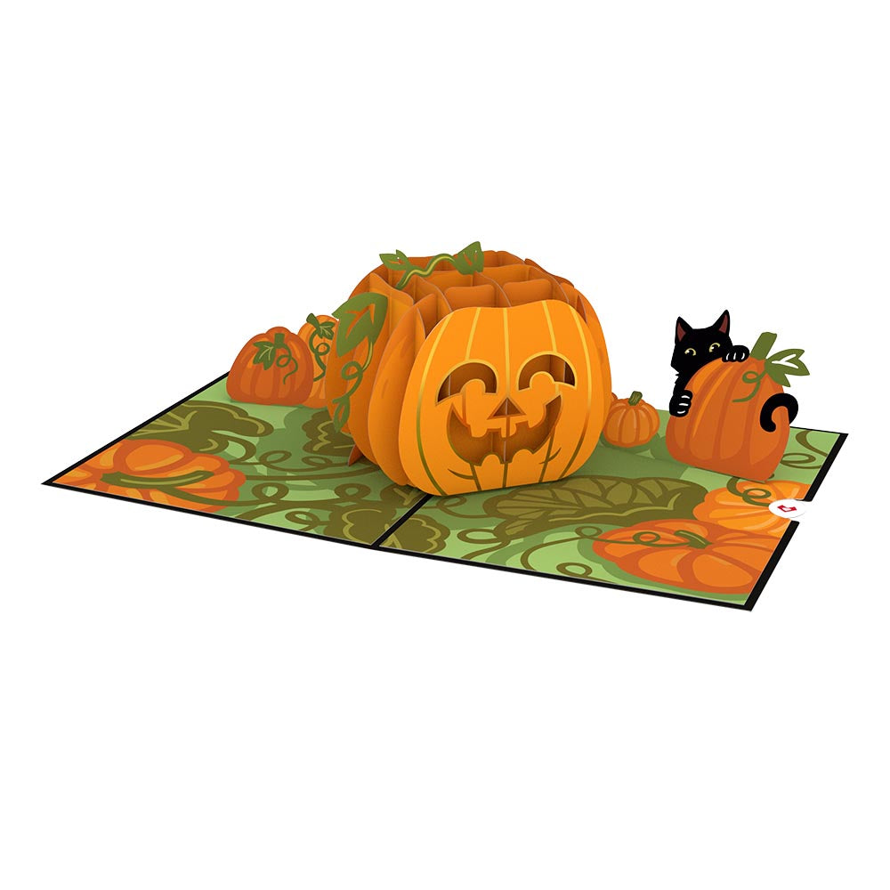 Happy Halloween Pumpkin             pop up card