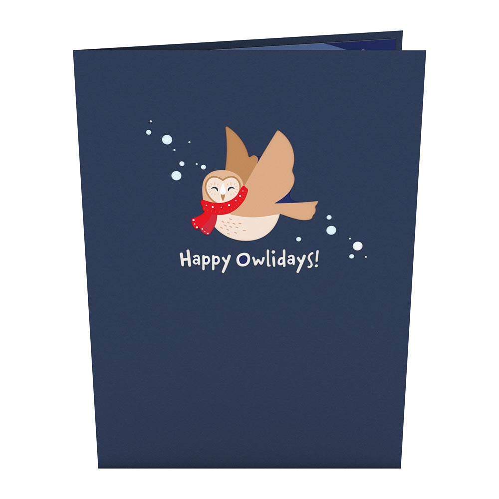 Happy Owlidays             pop up card