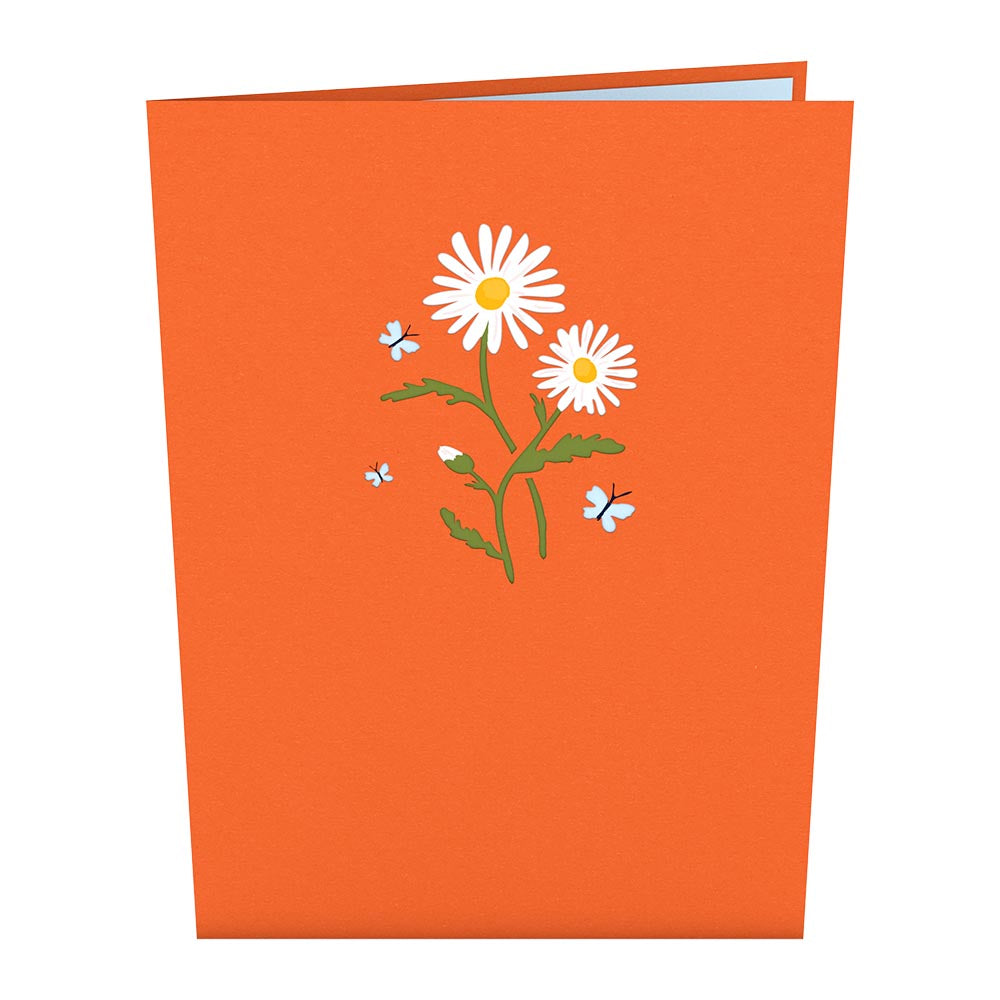 Daisies with Monarch Butterfly             pop up card