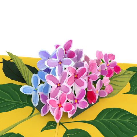 Lilacs greeting card -  Lovepop