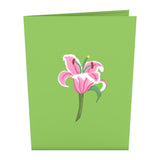 Lily Bloom                                                          birthday                                                     pop up card - thumbnail