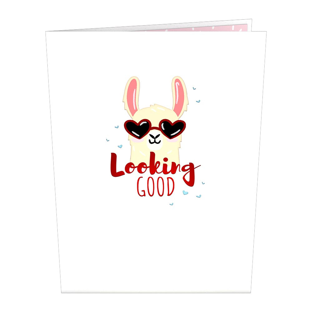 Looking Good Llama             pop up card