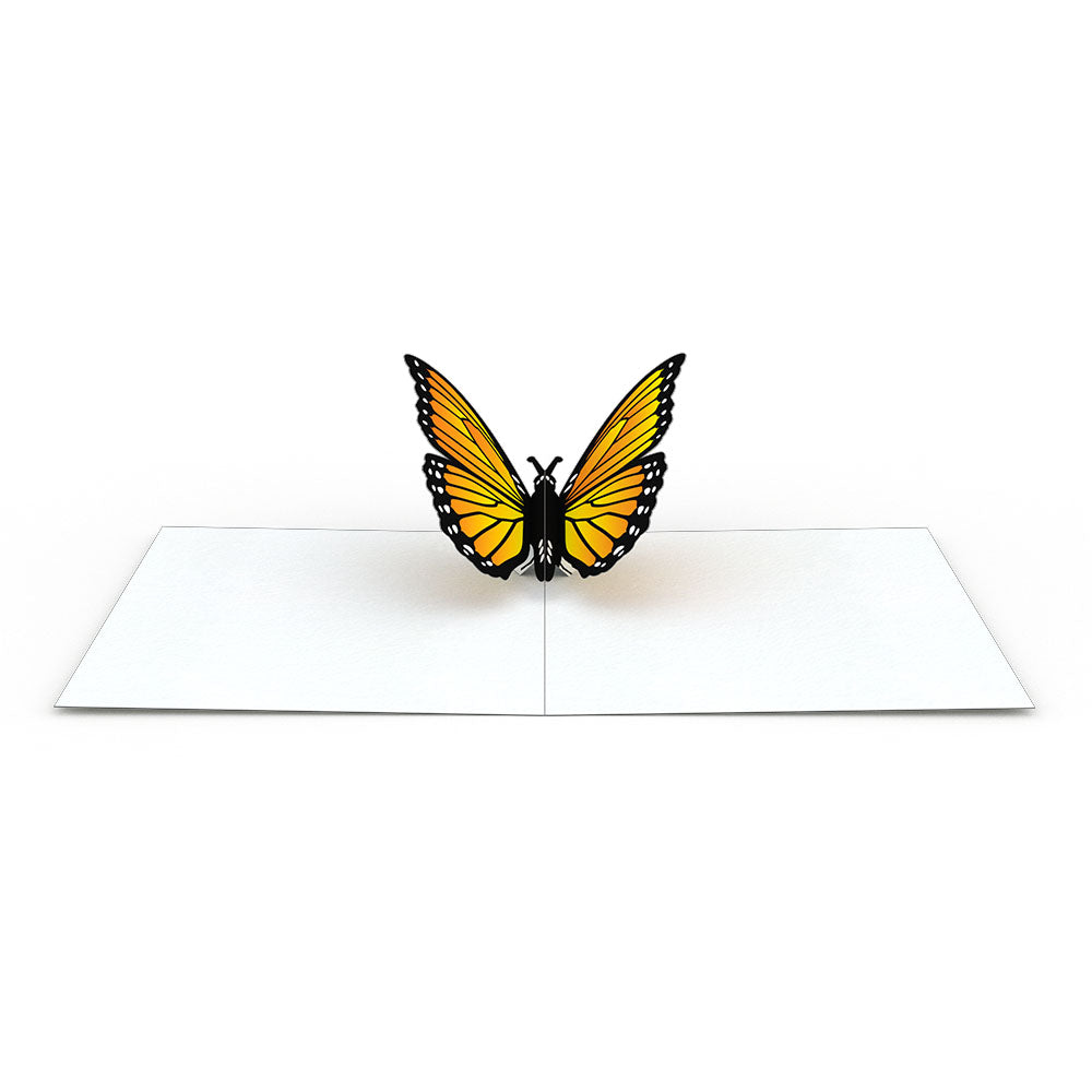 Butterfly Notecards (Assorted 4-Pack)             pop up card