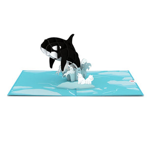 Orca Whale greeting card -  Lovepop