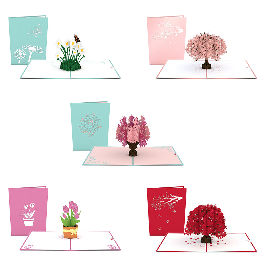 Flowers and Trees 5 Pack pop up card