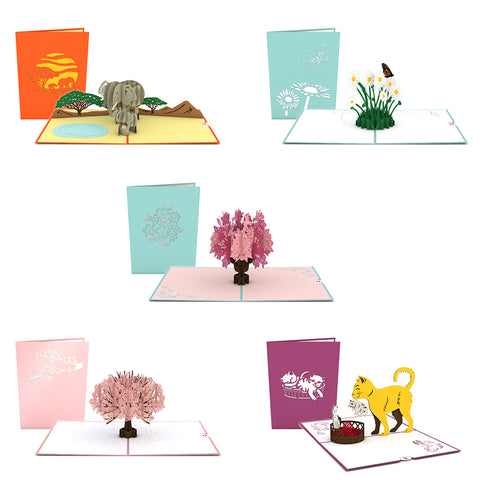 Mother's Day Favorites 5 Pack greeting card -  Lovepop