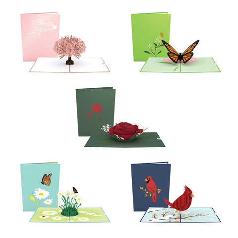Best Seller 5 Pack greeting card -  Lovepop