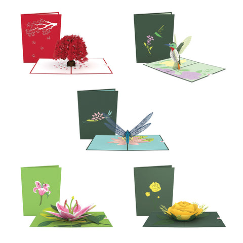 Nature 5 Pack greeting card -  Lovepop