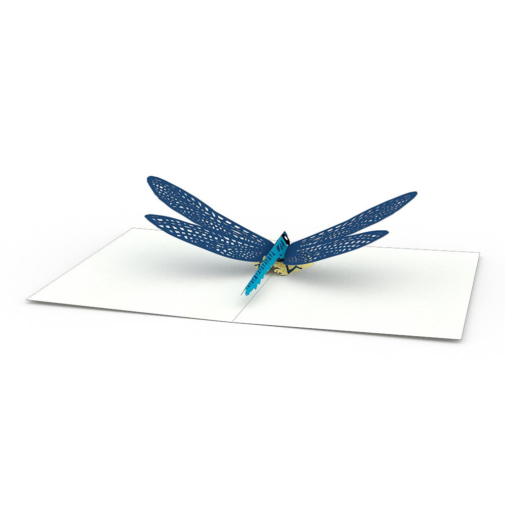 Dragonfly Notecards (4-Pack)
