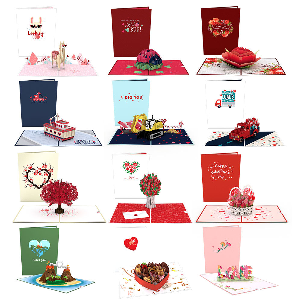 Everything Love 12-Pack             pop up card