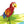 Parrot Pop up Card greeting card -  Lovepop