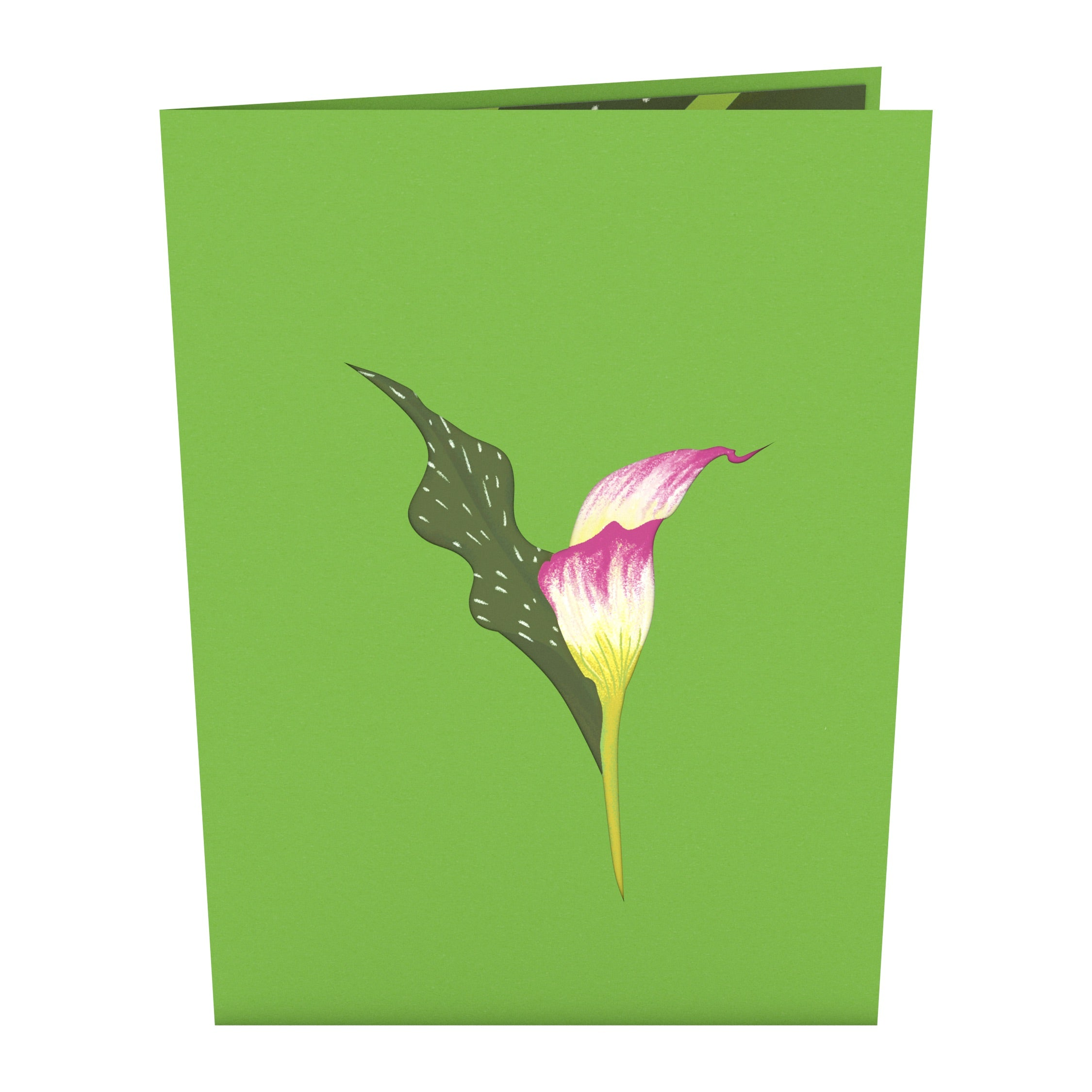 Pink Calla Lily Pop-Up Card