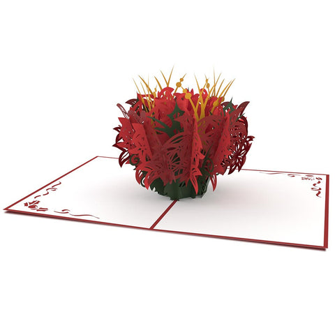 Christmas Poinsettia Pop Up Christmas Card greeting card -  Lovepop