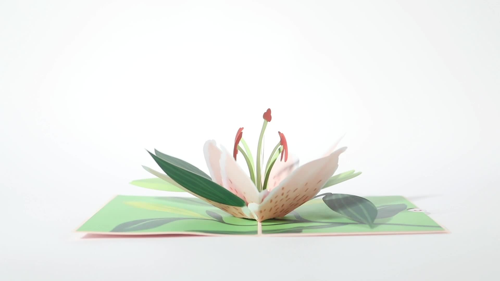 Mother's Day Lily Bloom 3D card