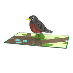 Robin greeting card -  Lovepop