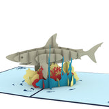 Shark                                   pop up card - thumbnail